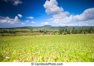 Mauritius Landscape - Beautiful landscape of southern part...
