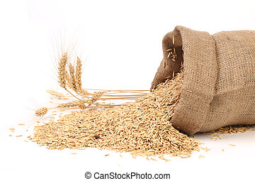 Sack with grains and ear of wheat. Isolated on a white...