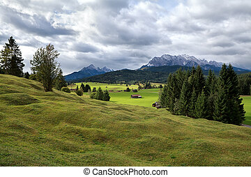 green alpine meadows in Bavaria - green alpine meadows and...