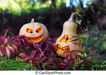 Halloween pumpkins in autumn leaves