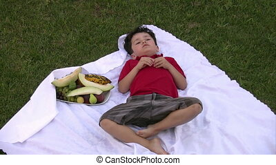 Little boy eating fruit at picnic o