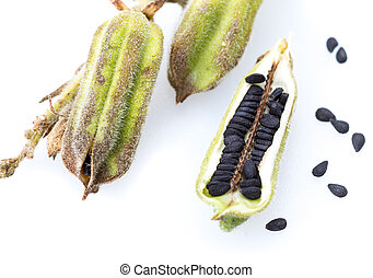 Plant black Sesame closed up on white background