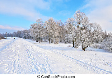 Snowy landscape in the Narew river valley. Beautiful winter...