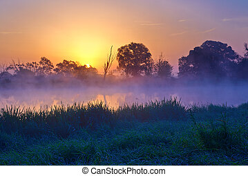 Beautiful foggy sunrise over the Narew river. Mazovia,...
