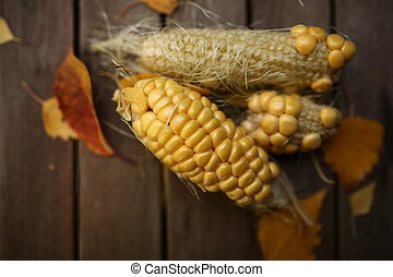 Home grown sweet corns with foliage leaves on a wooden...