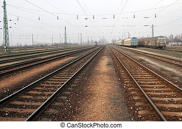 Railroad - Many railway tracks and freight trains