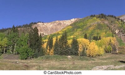 Rocky Mountain Autumn - the beauty of the colorado rocky...