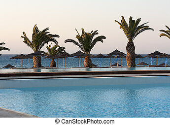 Palms near water of sea or ocean photo