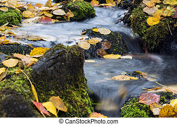 Stream flow between mossy rocks to lake - Small stream flow...