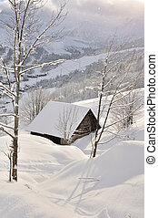 Chalet in the snow - Chalet mountain covered with snow...