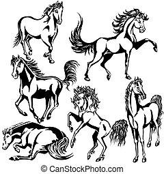 konie, komplet