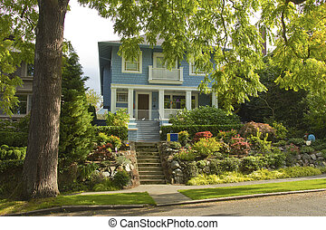 Large tree and house residential area Seattle WA - Large...