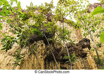 Kew Sue Ten in Doi Lo Chiangmai , Grand Canyon National...