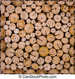 Cross Section View of Decorative Cutting wood - Texture...