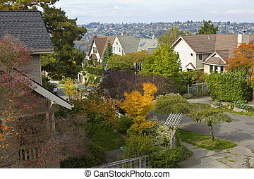 Fall colors in a residential area Seattle WA.