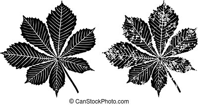 Leaves of chestnut tree - Black grunge leaves of chestnut...
