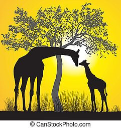 Giraffes and sunset - Illustration of young and old giraffe...