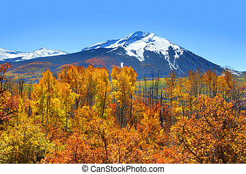 Kebler pass in autumn - Scenic view from Kebler pass