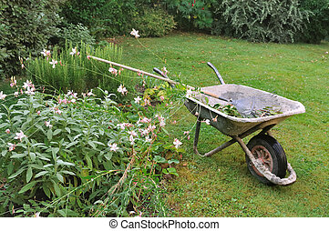 gardening  - old wheelbarrow and rake in a garden