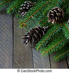 spruce branches and cones