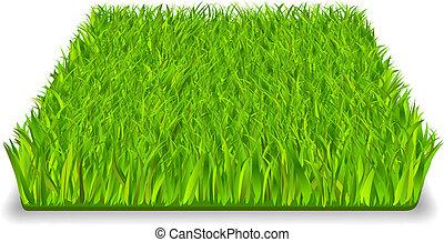 zöld, fű