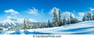 Winter mountain panorama - Winter mountain panorama with fir...