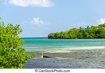 Sunken Canoe - Sunken canoe off the coast of San Andres y...