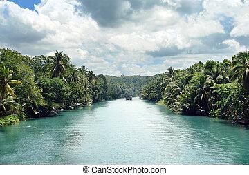 Tropical Jungle River - Tropical jungle river between palm...