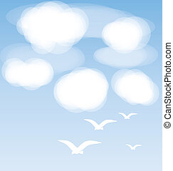birds and clouds
