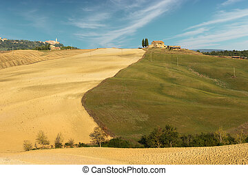 Tuscan land 2 - a typical landscape of tuscan countyside in...