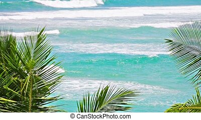 Rough sea and palms fronds