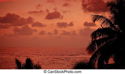 Red sunset on the tropical coast