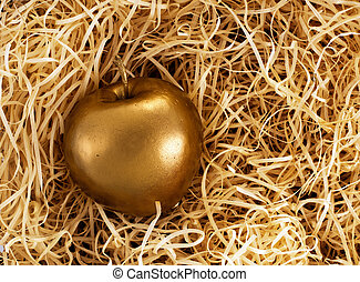 The Midas touch - golden apple, protected investment -...