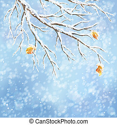 Winter vector snow-covered frost branch background - Winter...