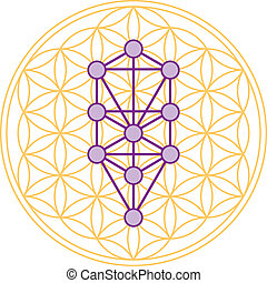 Tree Of Life Fits In Flower of Life - The ten Sephirots of...