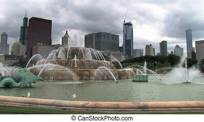 Chicago and Fountain - A seagull swoops in and lands on the...