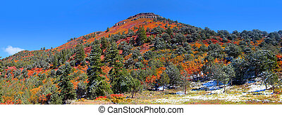 Mountain in Colorado rockys - Panoramic view of scenic...