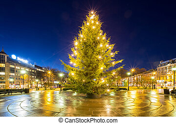 Christmas tree light in oslo city Norway