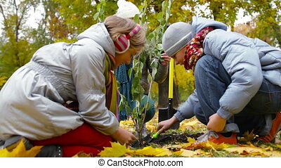 Gardening together - Mother and two kids planting tree in...