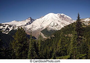 Trail High on Burroughs Mountain Cascade Range Mt. Rainier -...