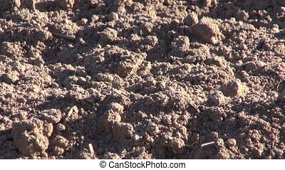 cultivated  field soil backgrou