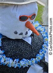 Snowbird scarecrow - A scarecrow decked out as a snowman...