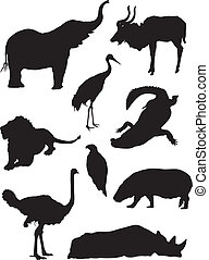 Zoo wild animals silhouette set