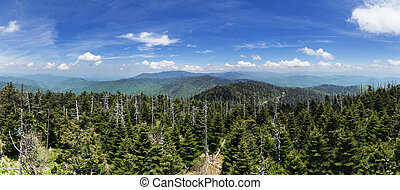 Clingmans Dome Panorama - panoarama looking north from the...