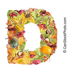 Letter D made of autumn colored leaves isolated on white...