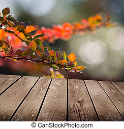 autumn theme and empty wooden deck table. Ready for product...