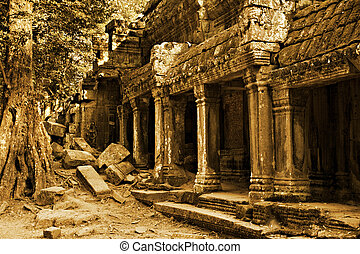 Angkor Wat - The ancient ruins of Ta Prohm at the Angkor Wat...