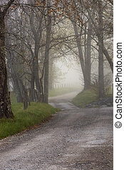 Sparks Lane, foggy sunrise, cades cove, great smoky...