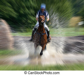 Waterriding - Horse