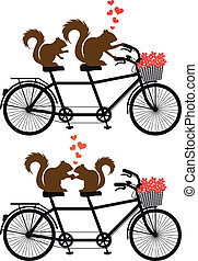 squirrels on bicycle, vector - squirrel couple in love on...